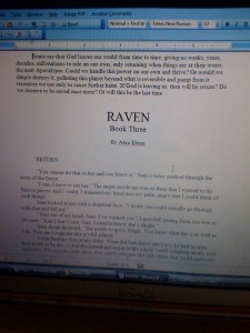 Raven On My Computer